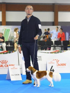 Grappa Euro Dog Show 2018